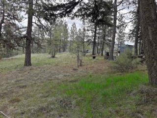 33901 Hawk Creek Ranch Rd, Davenport, WA 99122 (#201717393) :: The Spokane Home Guy Group