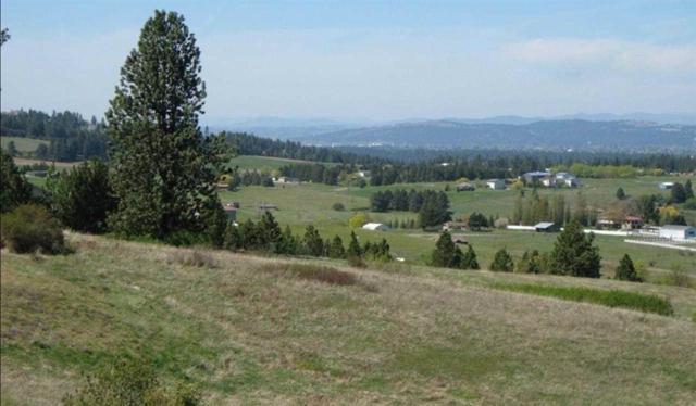 6611 S Saddle Ridge Ln, Greenacres, WA 99016 (#201622174) :: Prime Real Estate Group