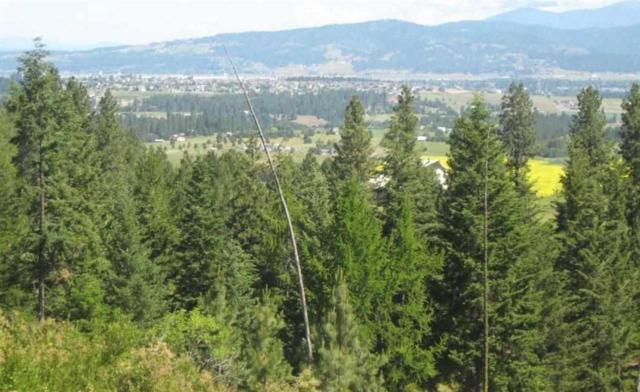 0XXX S Bridle Trail Ln, Greenacres, WA 99016 (#201622178) :: Prime Real Estate Group