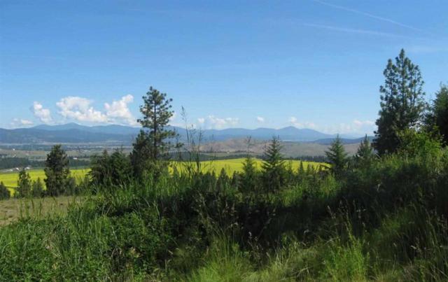 6707 S Bridle Trail Ln, Greenacres, WA 99016 (#201622179) :: Prime Real Estate Group