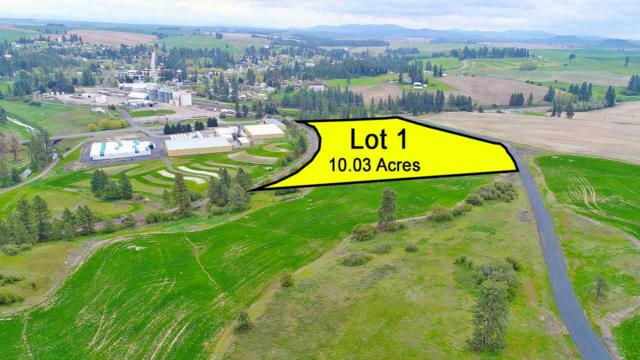 19303 E Langan Ln Lot #1, Rockford, WA 99030 (#201716521) :: 4 Degrees - Masters