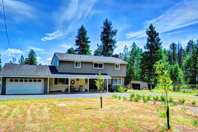 20204 N Day Mount Spokane Rd, Mead, WA 99021 (#201719797) :: The Synergy Group