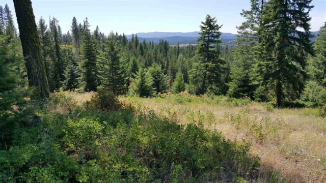 4686 Ranch Rd. #A Rd, Deer Park, WA 99006 (#201721307) :: The Hardie Group