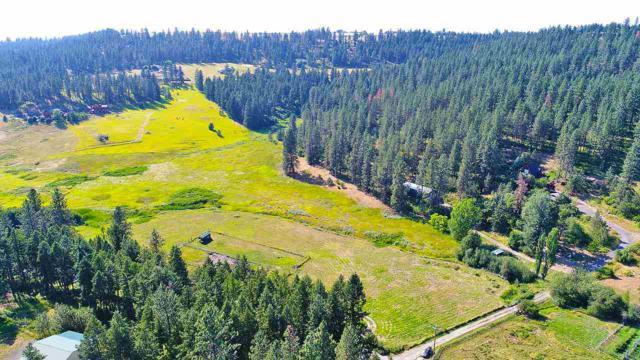 XX N Day Mt Spokane Rd, Spokane, WA 99021 (#201721370) :: The Synergy Group
