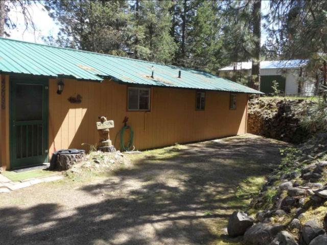 42096 N Old Homestead Dr, Davenport, WA 99122 (#201721565) :: 4 Degrees - Masters