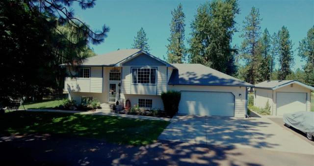 16225 Wildflower Ct, Nine Mile Falls, WA 99026 (#201721680) :: 4 Degrees - Masters