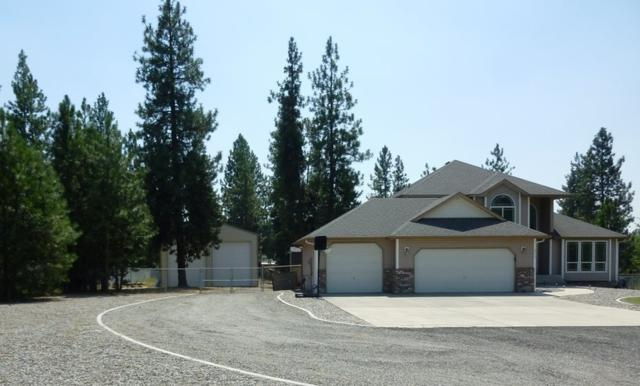 6215 Moriah Dr, Nine Mile Falls, WA 99026 (#201721742) :: 4 Degrees - Masters