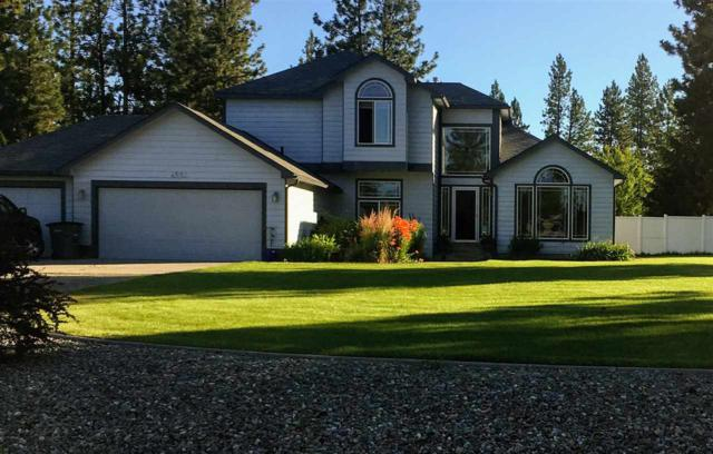 6220 Moriah Dr, Nine Mile Falls, WA 99026 (#201721761) :: 4 Degrees - Masters