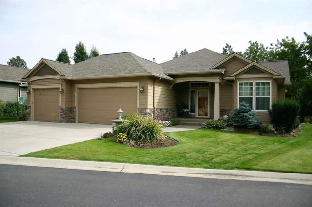 514 E Golden Eagle Ln, Colbert, WA 99005 (#201724423) :: 4 Degrees - Masters