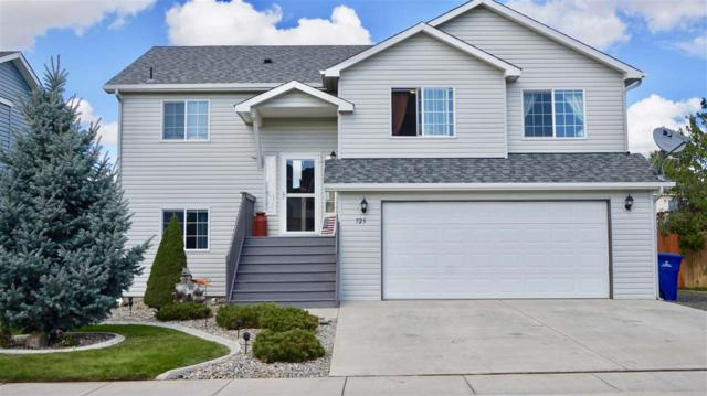725 E Carrie Dr, Medical Lk, WA 99022 (#201725008) :: The Hardie Group
