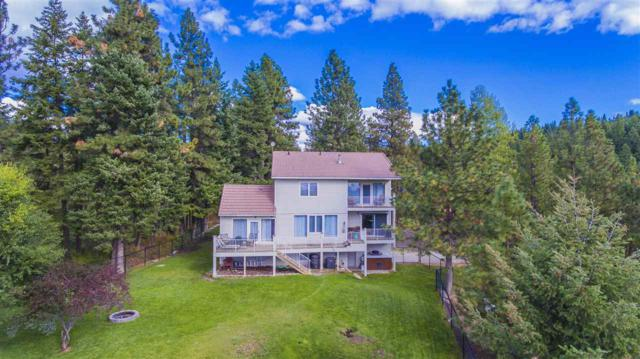 16603 E Scribner Rd, Spokane, WA 99217 (#201725015) :: The Hardie Group