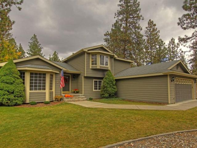 16615 N Wylie Dr, Nine Mile Falls, WA 99026 (#201726073) :: The Synergy Group