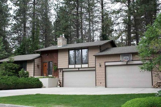4607 E Lane Park Rd, Mead, WA 99021 (#201726777) :: 4 Degrees - Masters