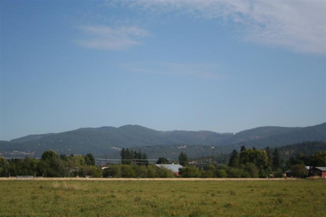 5114 N Oakland Rd Lot 1, Otis Orchards, WA 99027 (#201726783) :: Prime Real Estate Group