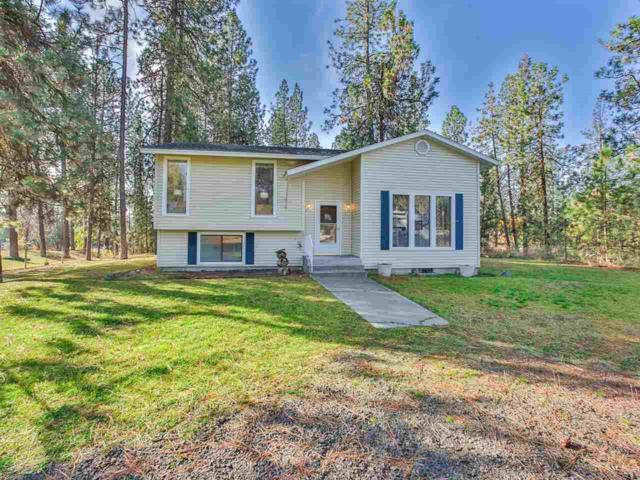 10979 W Ridge Tree Ct, Nine Mile Falls, WA 99026 (#201726893) :: 4 Degrees - Masters