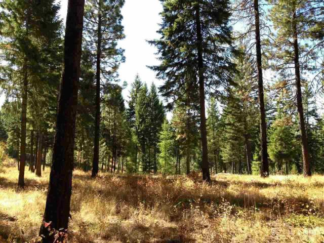 LOT #5 Lillooet Dr, Inchelium, WA 99138 (#201727038) :: Prime Real Estate Group