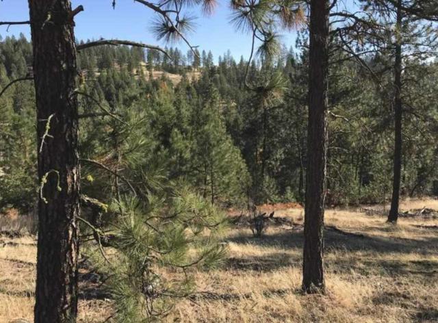 5009 W Country Hills Ln, Spokane, WA 99208 (#201727293) :: 4 Degrees - Masters