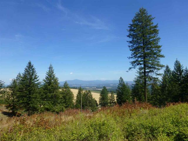 16920 N Logan Ln, Spokane, WA 99208 (#201811499) :: Prime Real Estate Group