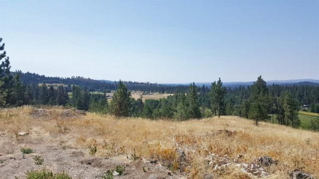 Lot 38 E Matthew Ln, Chattaroy, WA 99003 (#201811612) :: The Hardie Group