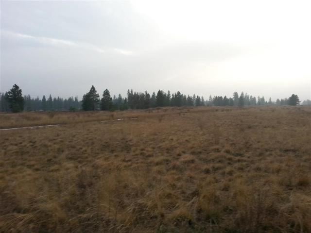 Vacant Land, Cheney, WA 99004 (#201811756) :: 4 Degrees - Masters