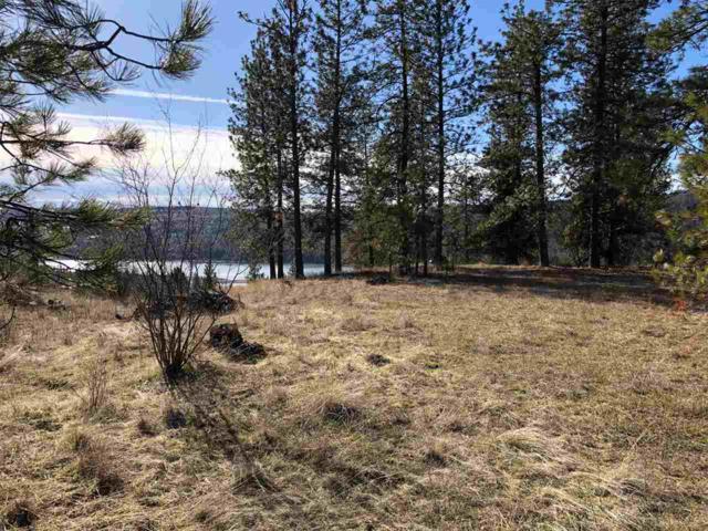 6425 Lakeview Dr, Nine Mile Falls, WA 99026 (#201811820) :: 4 Degrees - Masters