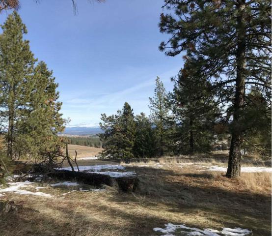 15xxx N Brannon Ln, Spokane, WA 99208 (#201812777) :: Prime Real Estate Group