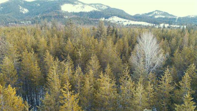 Lot 2 Eastside Rd, Priest River, ID 83856 (#201813309) :: The Synergy Group