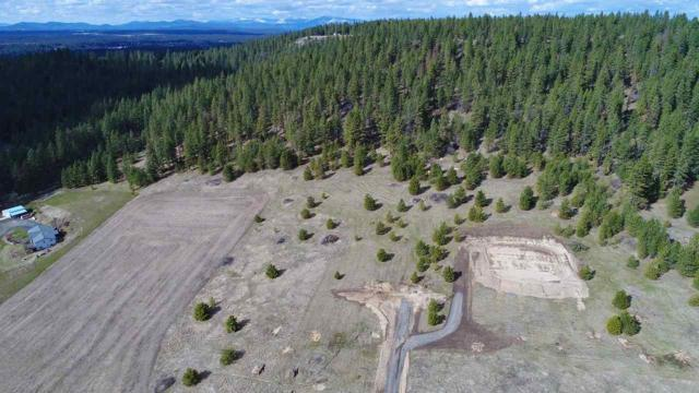 LOT A Big Meadows Rd, Chattaroy, WA 99003 (#201813556) :: The Hardie Group
