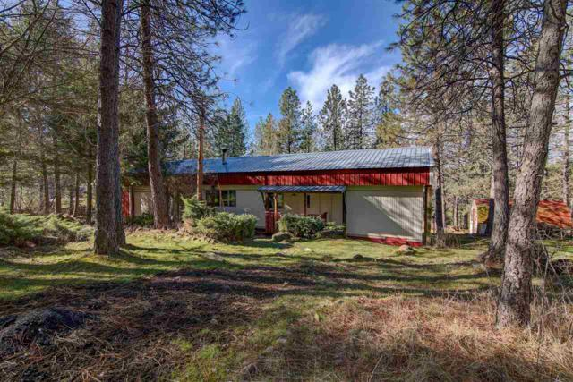 5615 E Grouse Rd, Chattaroy, WA 99003 (#201813785) :: 4 Degrees - Masters
