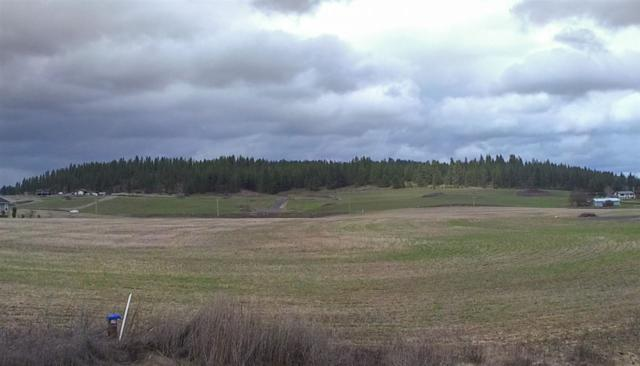 Lot F E Peone Landing Ln, Mead, WA 99021 (#201814143) :: Top Agent Team