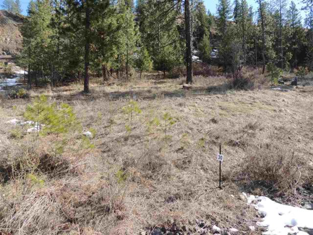 39360 Sun Ridge N. Lot 30, Seven Bays, WA 99122 (#201814258) :: Prime Real Estate Group