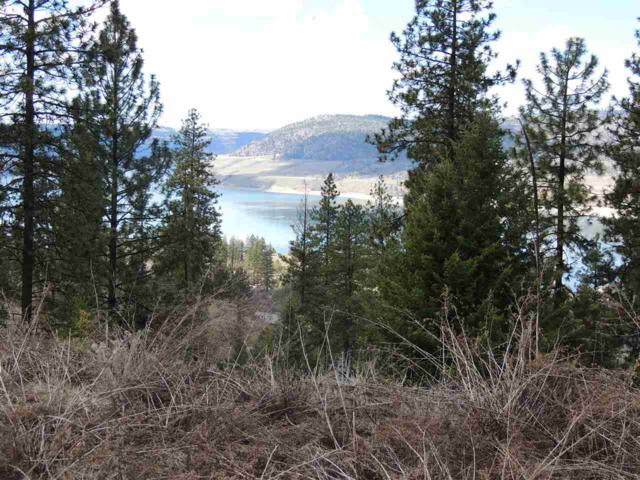 39401 Vantage Pt. N. Lot 93, Seven Bays, WA 99122 (#201814264) :: Top Agent Team