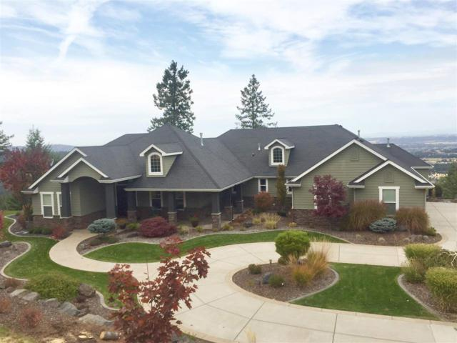 6717 S Summit Ln, Greenacres, WA 99016 (#201815226) :: The Hardie Group
