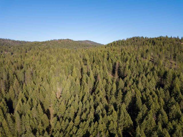 XXX Mt Spokane Park Dr, Mead, WA 99021 (#201815455) :: The Hardie Group