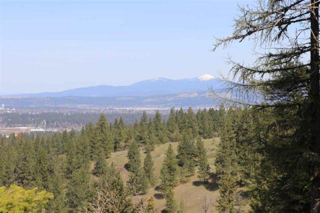 6700 S Wilcox Ln, Spokane, WA 99206 (#201815717) :: The Synergy Group