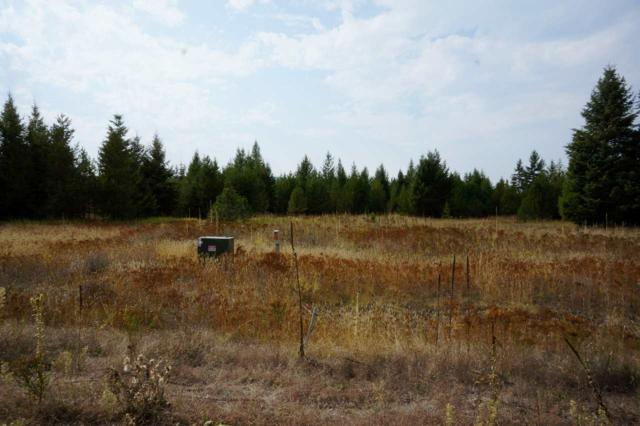 00 N Wisteria Ln Parcel H - .904, Chattaroy, WA 99003 (#201816443) :: The Hardie Group