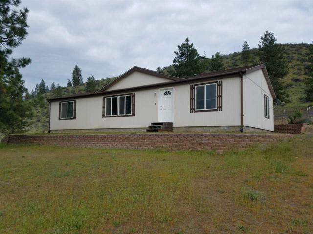 42565 N Buckhorn Rd, Deer Meadow, WA 99122 (#201816567) :: The Spokane Home Guy Group