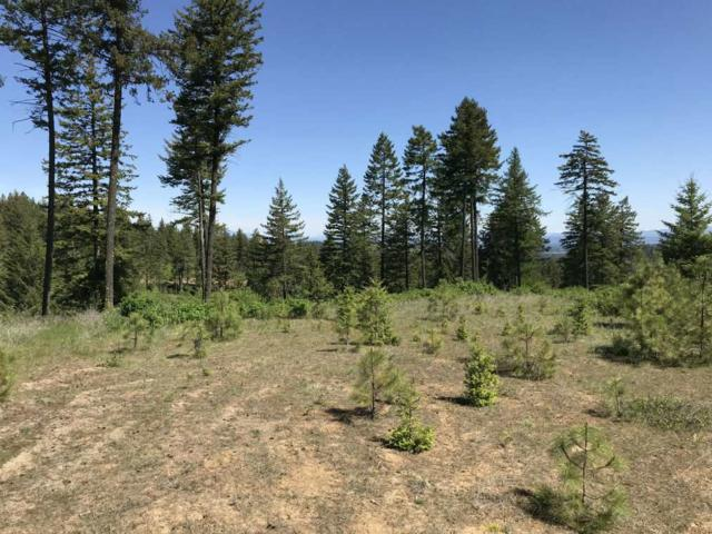 5720 W Hayden Ln, Spokane, WA 99208 (#201816967) :: The Synergy Group