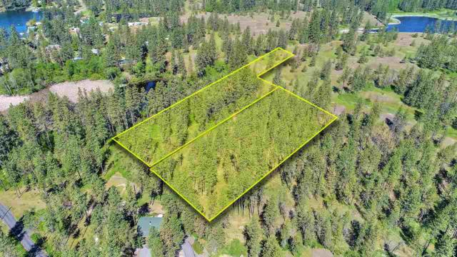 00 Clear Lake Rd, Medical Lk, WA 99022 (#201817513) :: Top Agent Team