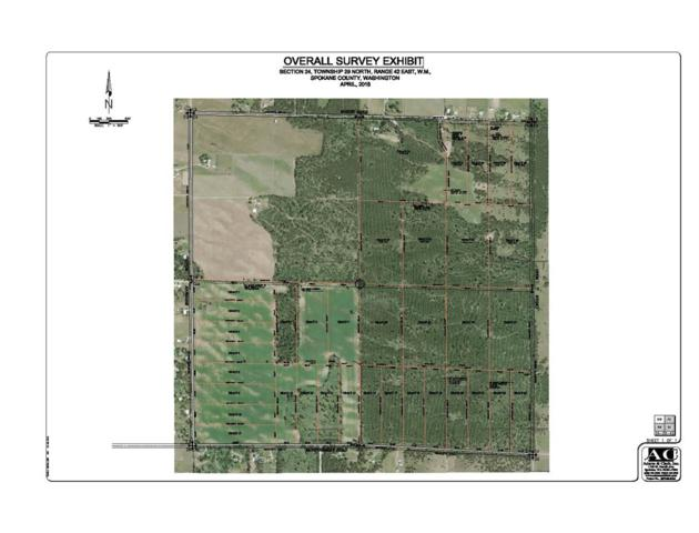 xxx36 Fausett Rd Tract 36, Deer Park, WA 99006 (#201817872) :: 4 Degrees - Masters