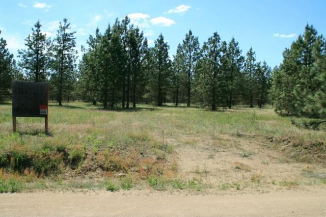 Lot 17 Bruce Rd, Chattaroy, WA 99003 (#201818421) :: The Hardie Group