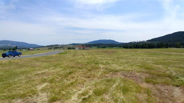 2147 Ringneck Loop, Colville, WA 99114 (#201818848) :: The Synergy Group