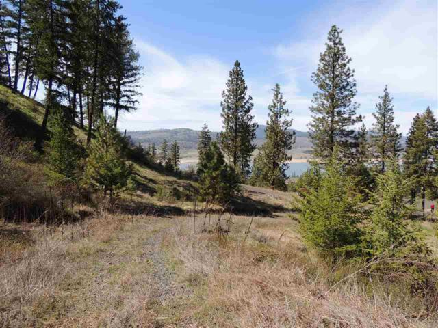 39670 Vantage Pt. N. Lot 3, Seven Bays, WA 99122 (#201819330) :: The Synergy Group