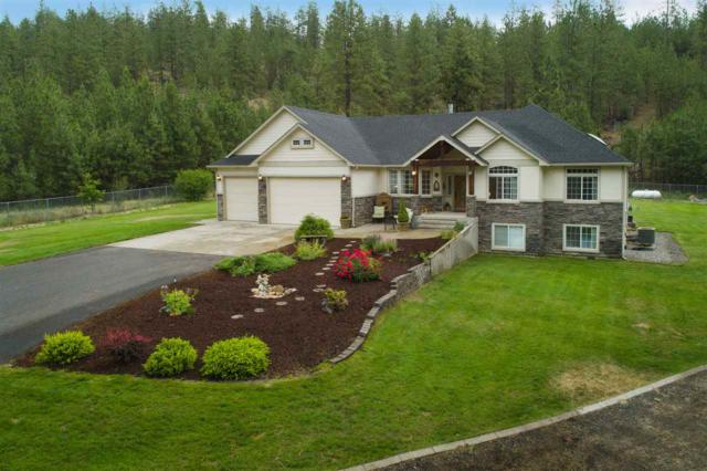14324 N River Park Ln, Nine Mile Falls, WA 99026 (#201819479) :: The Synergy Group