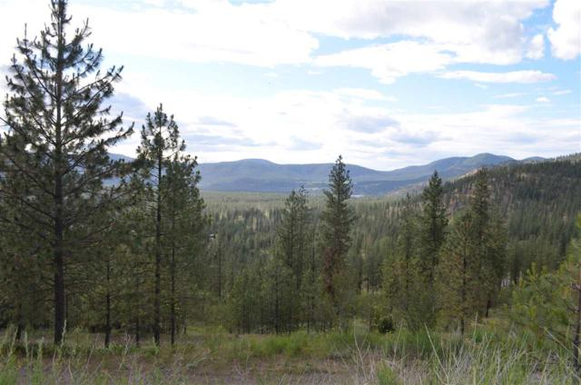 00 Pine Ridge Way Lot 10, Nine Mile Falls, WA 99026 (#201819685) :: The Spokane Home Guy Group