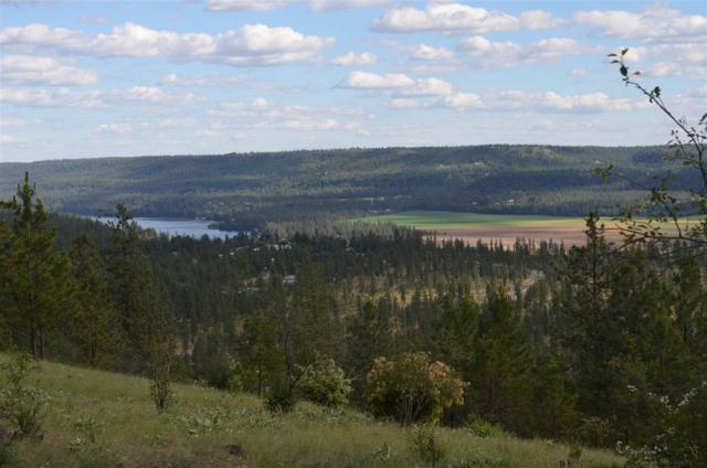 00 Pine Ridge Way Lot 12, Nine Mile Falls, WA 99026 (#201819700) :: The Spokane Home Guy Group