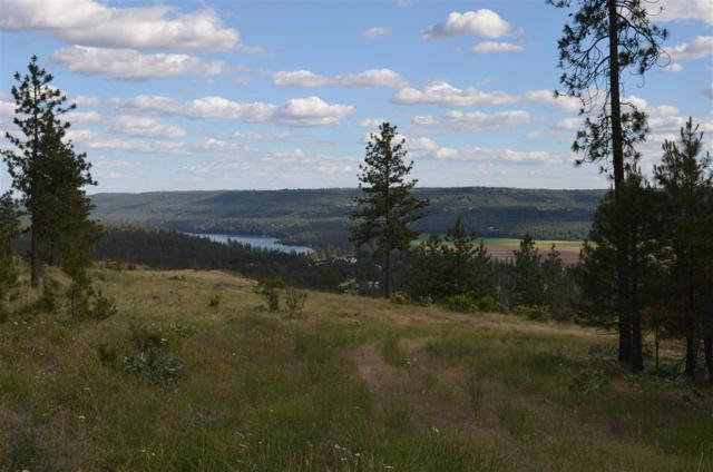 00 Pine Ridge Way Lot 14, Nine Mile Falls, WA 99026 (#201819704) :: The Spokane Home Guy Group