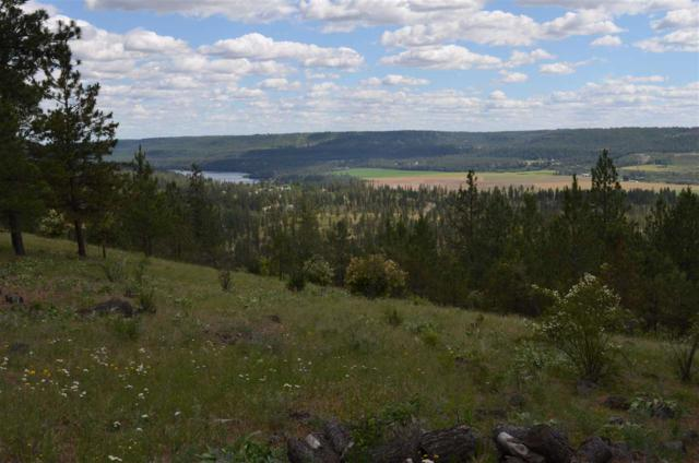 00 Pine Ridge Way Lot 18, Nine Mile Falls, WA 99026 (#201819706) :: The Hardie Group