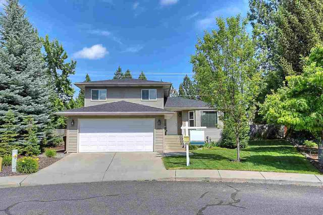 3528 E Lydia Ct, Spokane, WA 99223 (#201819714) :: The Hardie Group