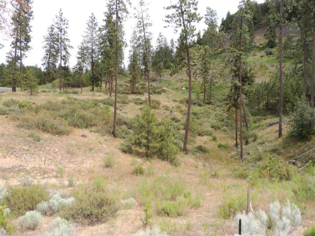 39550 Sun Ridge N. Lot 69, Seven Bays, WA 99122 (#201819767) :: Top Agent Team